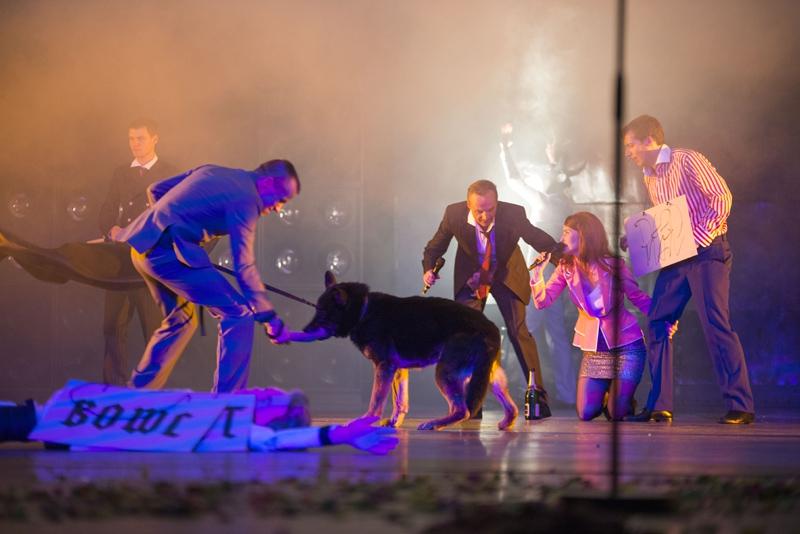 Was macht der Hund denn da auf der Bühne? © Kerstin Schomburg